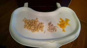 Annie's Organic Mac n Cheese, Turkey slices and Mango